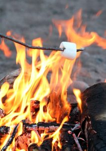image of a marshmallow being toasted over a campfire